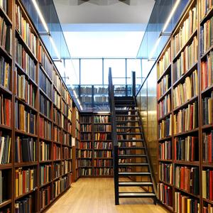 Библиотеки Пинеги