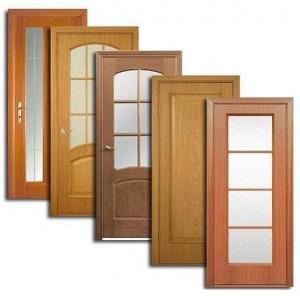Двери, дверные блоки Пинеги