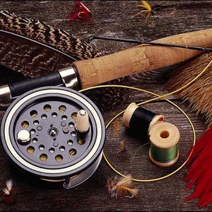 Охотничьи и рыболовные магазины Пинеги