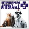 Ветеринарные аптеки в Пинеге